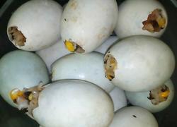 广式腊肠糯米蛋