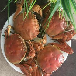 清蒸沱湖螃蟹