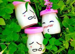自制电饭煲酸奶