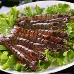 基围虾[图]