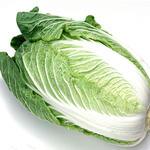 白菜[图]